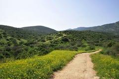 De lente in Hogere Galilee. Stock Fotografie