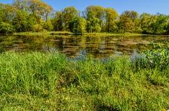 De lente in Iowa Royalty-vrije Stock Afbeelding