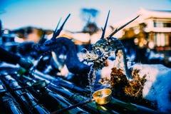 De lente Japan Oshino Hakkai van de draakkraan Royalty-vrije Stock Foto's