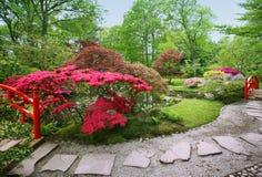 De lente in Japanse tuin royalty-vrije stock afbeeldingen