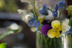 De lente kleine bloemen stock foto