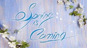 De lente is komende tekst, de takjes van de de lentebloesem met het bokehlighting Stock Foto's