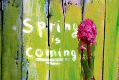 De lente komt Royalty-vrije Stock Foto