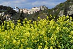 De lente in Kreta Stock Foto