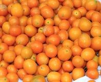 Kumquat Royalty-vrije Stock Foto