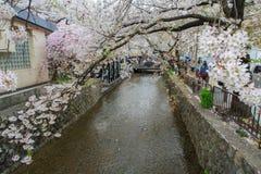 De lente in Kyoto, Japan Stock Fotografie