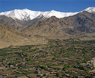 De lente in ladakh-2 Stock Afbeelding