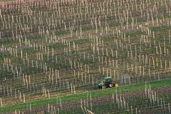 De lente Landbouw Landelijke Scène met Kleine Tractor en Rijen van Wijngaarden Een Groene Tractor cultiveert de Wijngaardaanplant Royalty-vrije Stock Foto