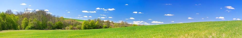 De lente landelijk landschap met gebied en blauwe hemel, een panorama royalty-vrije stock fotografie