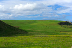 de lente landschap - groen gebied   Stock Fotografie