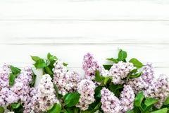 De lente lilac bloemen op witte houten achtergrond Vlak leg, hoogste mening, exemplaarruimte stock afbeeldingen