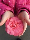 De lente is in de lucht royalty-vrije stock foto's