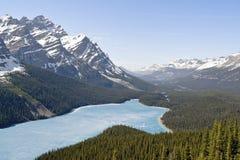 De lente luchtmening van het Peyto-meer - het nationale park van Banff, Canada stock foto's