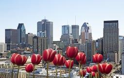 De lente in Montreal Stock Foto
