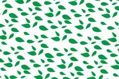 De lente natuurlijke van de achtergrond bladereninstallatie vectorbehangconcept voor Web en druk Stock Afbeeldingen