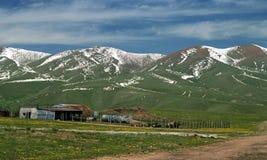 De lente op Assi Plateau Stock Fotografie