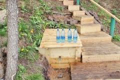 De lente op de Beverrivier dichtbij het dorp zariv 'ya Grutten 2 is er Oud Road van Smolensk stock foto's