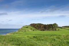 De lente op het Eiland royalty-vrije stock foto