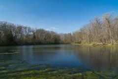 De lente op het meer Stock Afbeeldingen