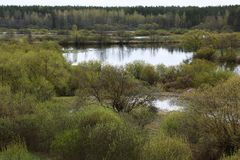 De lente op de rivier Royalty-vrije Stock Foto's