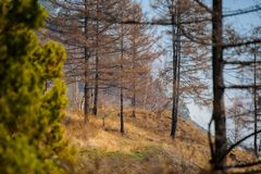 De lente op Road circum-Baikal aan het zuiden van Meer Baikal Royalty-vrije Stock Afbeelding