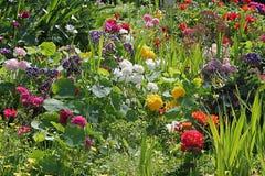 De lente is opgesprongen! stock afbeelding