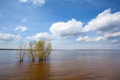 De lente overstromende wateren in de stad Stock Fotografie