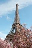 De lente in Parijs Stock Foto's