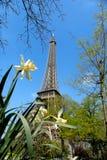De lente in Parijs, de toren van Eiffel stock afbeeldingen