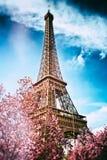 De lente in Parijs De Toren van Eiffel Royalty-vrije Stock Afbeelding