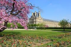 De lente in Parijs, Frankrijk Royalty-vrije Stock Foto