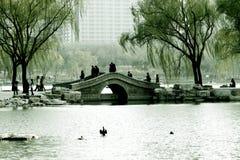 De lente in Peking stock foto