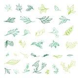 De lente plant Schetspictogrammen Stock Afbeeldingen