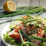 De lente Plantaardige Salade op de witte plaat vegan Royalty-vrije Stock Foto