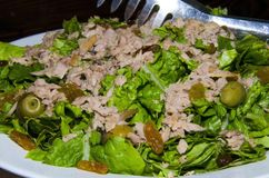 De lente plantaardige salade stock afbeeldingen