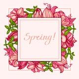 De lente! Prentbriefkaar met bloemen Amaryllis, Hippeastrum en succulents Crassula Vierkante samenstelling Uitnodiging, gelukwens stock illustratie