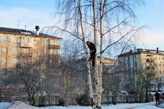 In de de lente provinciale stad op de achtergrond van vijf-verhaal die een berk bouwen royalty-vrije stock foto's