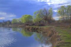 De lente riverbank Stock Afbeelding