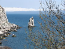 De lente in rots Crimea_Parus Stock Fotografie