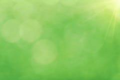 De lente schittert vers groen licht abstract onduidelijk beeld Royalty-vrije Stock Afbeeldingen