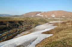 De lente in toendra (het noorden Sibiria) Stock Afbeelding