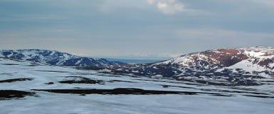 De lente in toendra (Panorama van Noord-Siberië) Royalty-vrije Stock Afbeeldingen