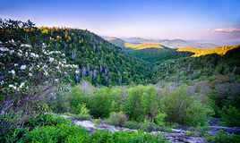 De lente in Toneel Blauw Ridge Parkway Appalachians Smoky Mount royalty-vrije stock foto