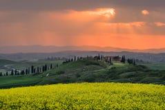 De lente in Toscanië bij zonsondergang Stock Foto