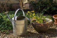 De lente in tuin royalty-vrije stock afbeeldingen