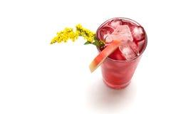De lente van de cocktail Royalty-vrije Stock Afbeelding
