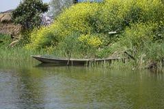 De lente van het waterland van de waterstad Stock Fotografie