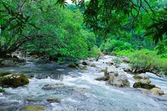 De lente van Nuocmooc - Mooc-de Klap nationaal park van stroomphong Nha KE stock afbeelding