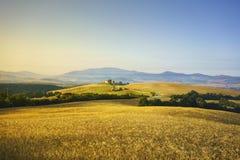 De lente van Toscanië, rollende heuvels op zonsondergang Landelijk landschap Groen Royalty-vrije Stock Foto