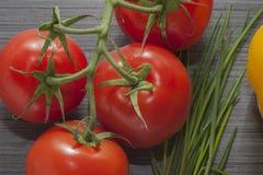 De lente vegetalbes Royalty-vrije Stock Afbeeldingen